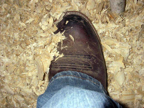 My kind of place - sawdust on the floor!!