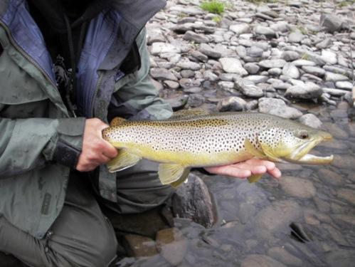 Dennis' fish in Joe Marinzel's capable hands. Photo by: Dennis Burns