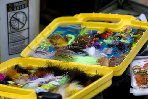This was just one of the boxes we brought. We like flies. Photo by: Matt Jones
