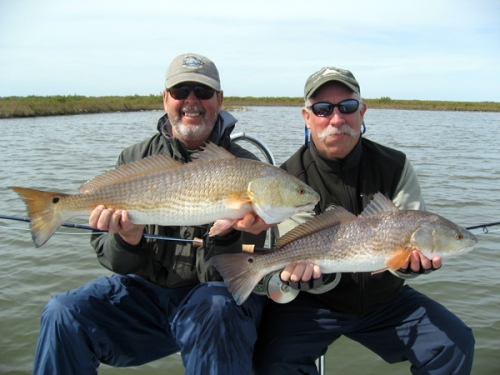 double redfish